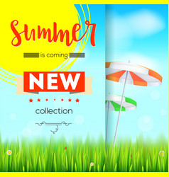 summer new collection stylish advertisement text vector image vector image
