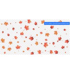 Autumn background design autumn falling leaves on vector