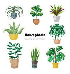 Collection decorative houseplants isolated on vector
