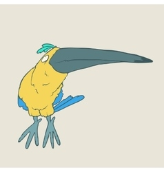 Hand drawn funny parrot or toucan bird on vector