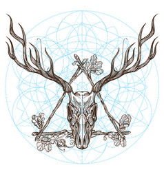 Sketch of deer skull in triangular vintage frame vector