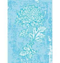 chrysanthemum1 vector image vector image
