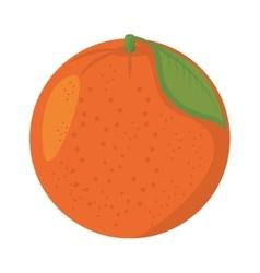 Orange citrus fruit isolated icon vector