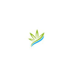 weed cannabis leaf medic logo vector image