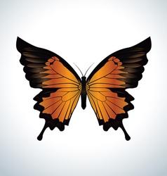 Orange butterfly vector image vector image