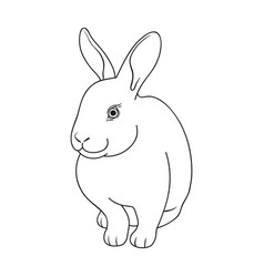 gray rabbitanimals single icon in outline style vector image