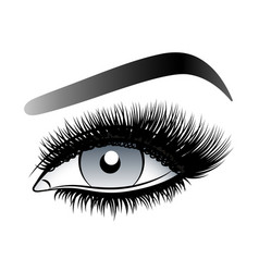 gray woman eye with long false lashes with vector image