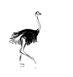 Ostrich sketch black for your design vector image