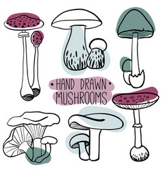 Set with outline mushrooms vector