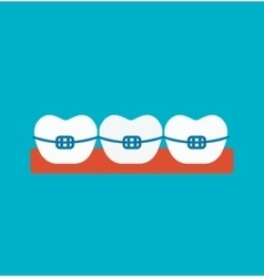 Braces vector image