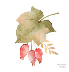 watercolor autumn bouquet of leaves vector image vector image