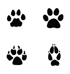 cat jaguar dog fox footprint vector image