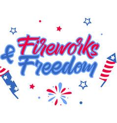 fireworks freedom on white background vector image