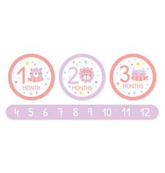 Newborn baby monthly stickers set 12 month label vector