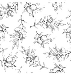 Seamless pattern olive tree branches with berries vector