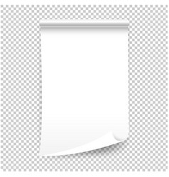 white blank sheet curled paper isolated vector image