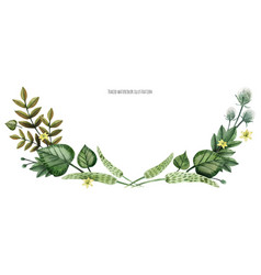 Wild plants hand painted watercolor arc vector