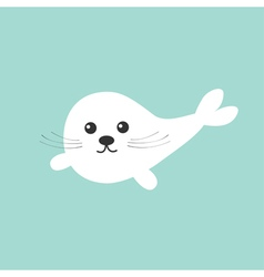 Harp baby seal pup with mustaches Cute cartoon vector image