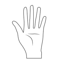 line nice hand with all fingers and palm vector image vector image