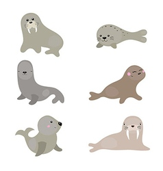Set funny walruses and sea lions vector
