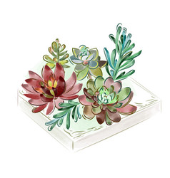 Watercolor collection of vector