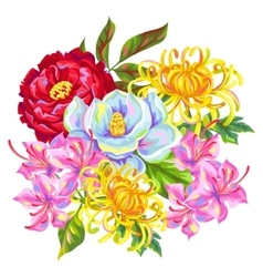 Bouquet with China flowers Bright buds of vector image