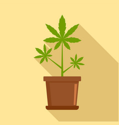 cannabis plant pot icon flat style vector image