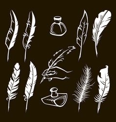 Feather pens set vector