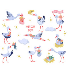 Flat set of white storks with babies vector