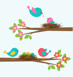 Two cute families of birds on blooming branch tree vector