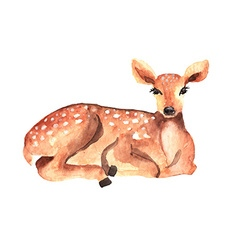 Watercolor deer vector