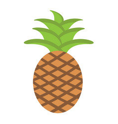 pineapple flat icon fruit and tropical vector image