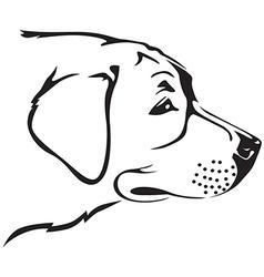 retriver dog vector image vector image