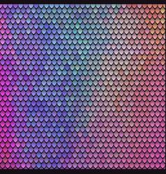 color squama texture vector image