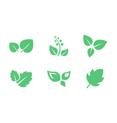 green leaves set leaf trees and plants vector image