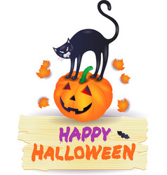 halloween pumpkin with black cat and wooden sign vector image