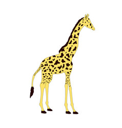 isolated giraffe animal cartoon vector image