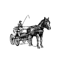 open carriage vector image