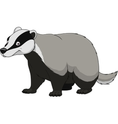 Adult funny badger vector image vector image