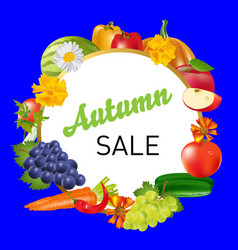 autumn sale drawing fruits vector image