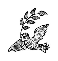 dove of peace with a twig vector image