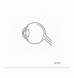 eye icon isolated vector image