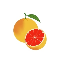 Grapefruit Fruit Icon vector