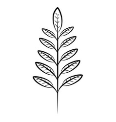 leaves branch decorative vector image