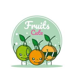oranges cute fruits cartoons vector image