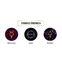 Salt mercury sulfur set alchemical symbols vector