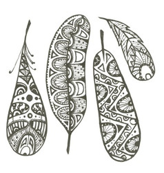 Set of sketch decorative feather vector image