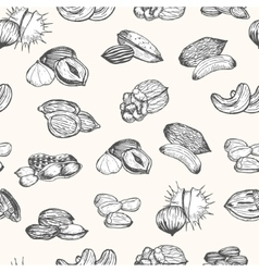 Nuts Set Hand Draw Sketch Background Pattern vector image