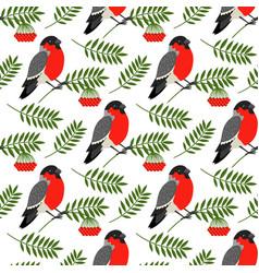 Bullfinch and rowan berries pattern vector