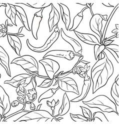 Cayenne pepper seamless pattern vector